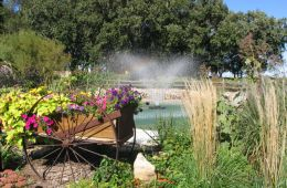 Floating Fountain Installation, Sales and Service
